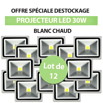 Lot de 12 Projecteurs Led 30W En Aluminium Blanc Chaud - IP65