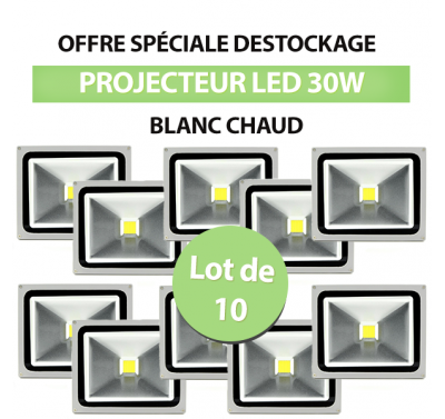 Lot de 10 Projecteurs Led 30W En Aluminium Blanc Chaud - IP65