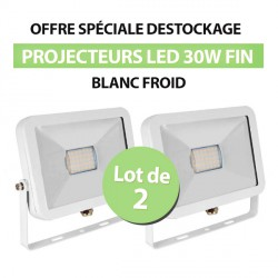 Lot de 2 Projecteurs Led 30W Ultra-fin SMD I-DESIGN Blanc Froid - IP65