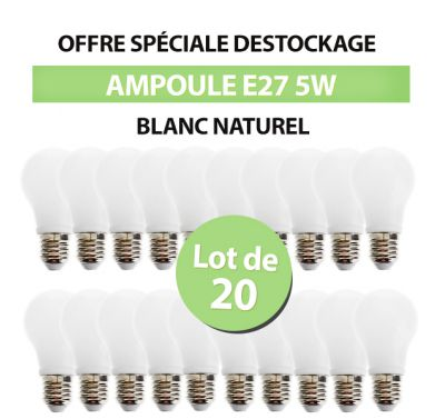 Lot de 20 Ampoules Led Bulb E27 5W Blanc Naturel