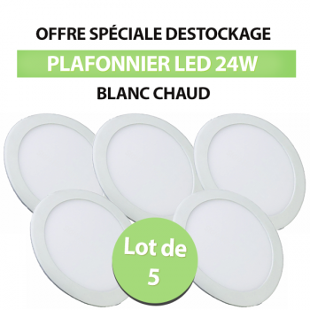 Lot de 5 Plafonniers Led 24W Rond Blanc Chaud