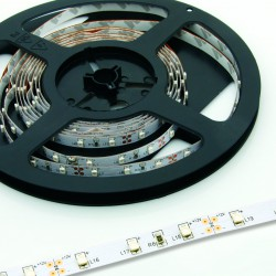 Ruban à Leds 24V RGBWH 12mm IP65 - 10 m