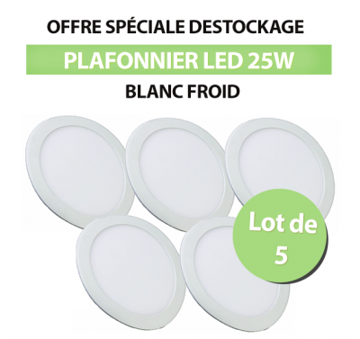 Lot de 5 Plafonniers Led 24W Rond Blanc Froid
